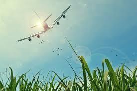 Care sunt lucrurile pentru care trebuie sa iti faci griji atunci cand pleci in vacanta cu avionul?